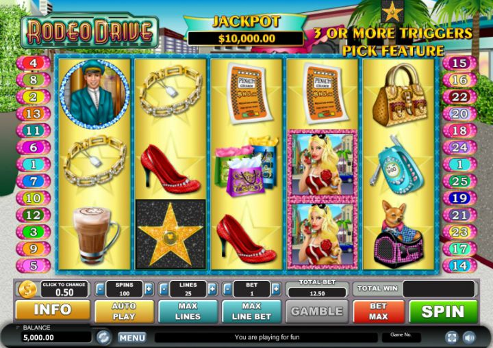 Rodeo Drive video slot machine screenshot